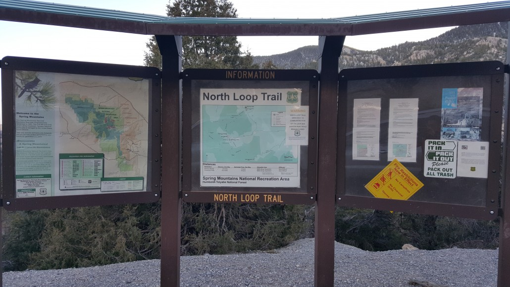 Mount Charleston North Loop Trailhead